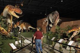 Branson Dinosaur Museum, Branson MO Shows (2)
