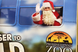 Branson's Promised Land Zoo - Let There Be Lights, Branson MO Shows (2)