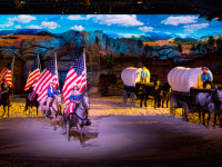 Dixie Stampede Photo #5