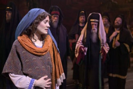 Miracle of Christmas, Branson MO Shows (0)