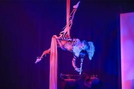 A Janice Martin Cirque Show, Branson MO Shows (0)