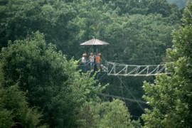 Adventure Ziplines of Branson, Branson MO Shows (0)