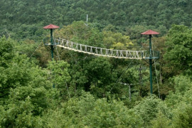 Adventure Ziplines of Branson, Branson MO Shows (1)