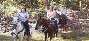Bear Creek Trail Rides