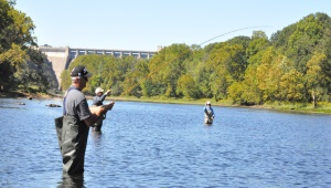Taneycomo Fly Fishing