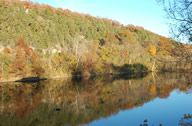Taneycomo Reflection