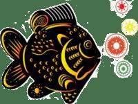 Crystal Fish Logo