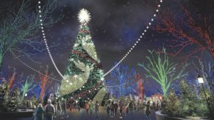 Christmas trees in Branson